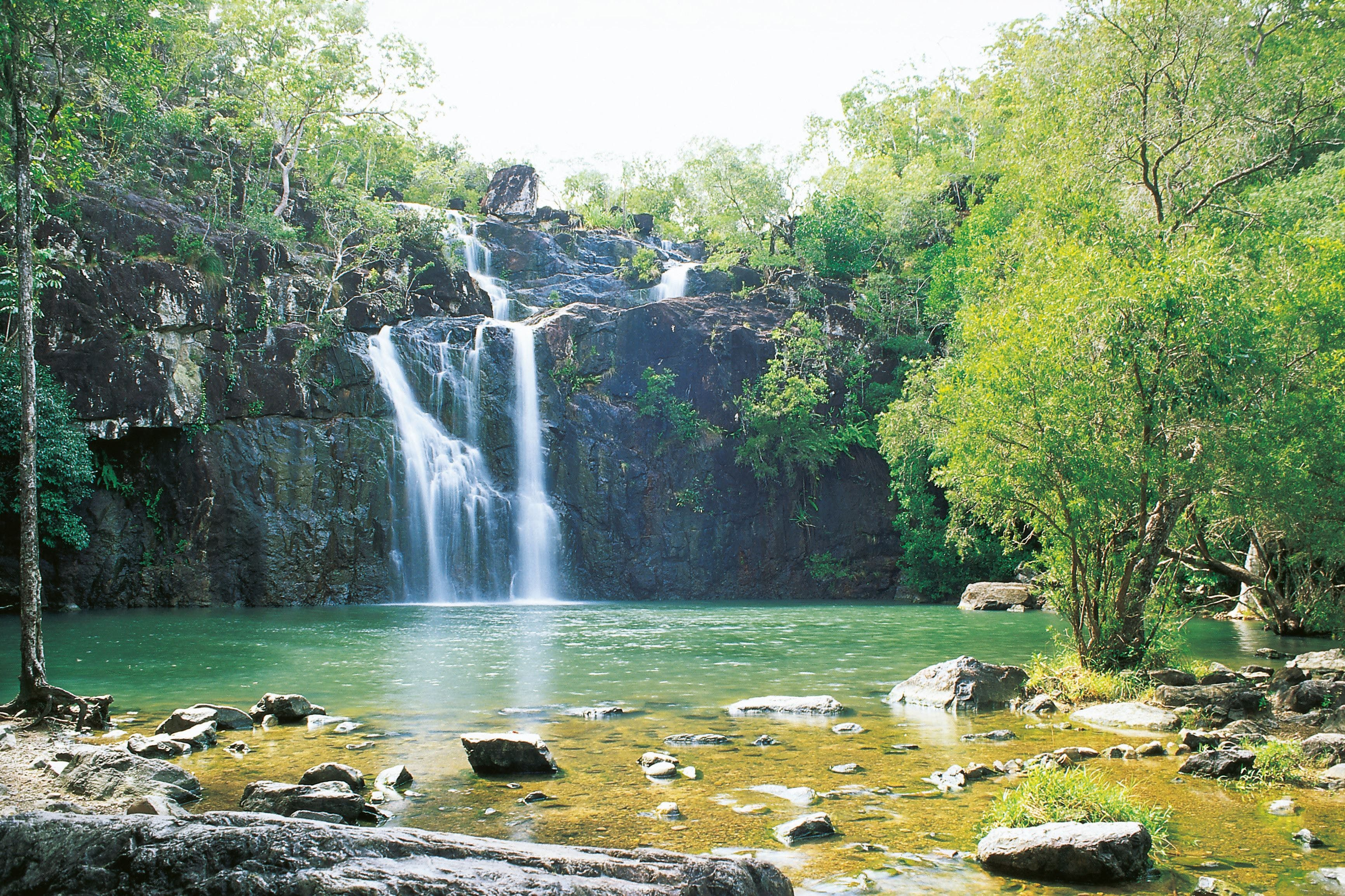 Airlie Beach to Cedar Creek Falls - Accommodation Adelaide
