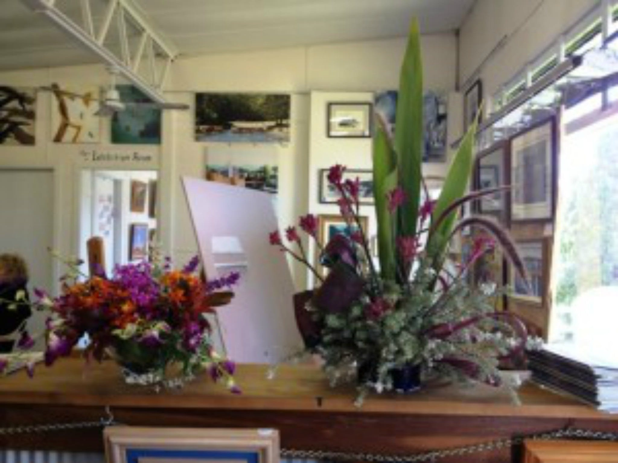 Dungog Arts Society - Accommodation Adelaide