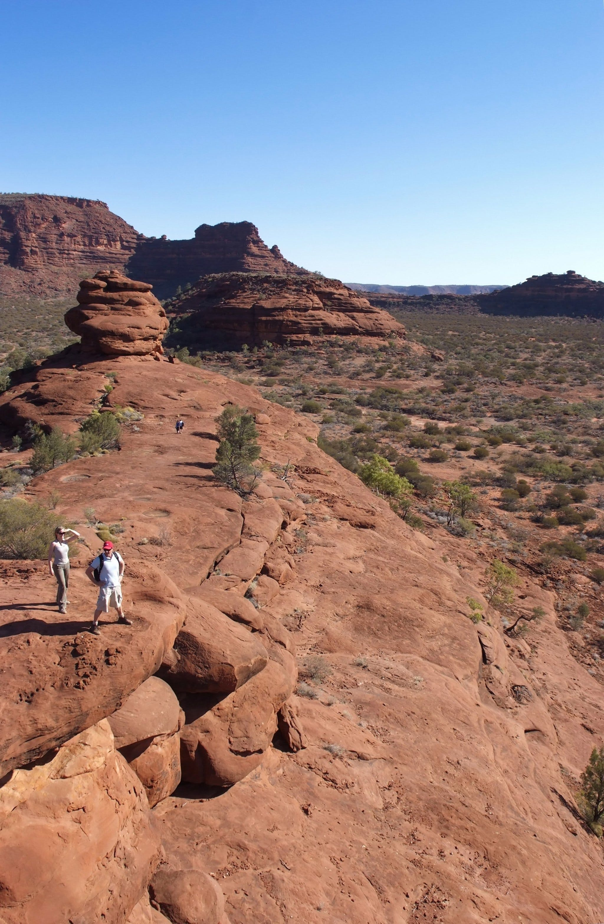 Finke Gorge National Park - Accommodation Adelaide