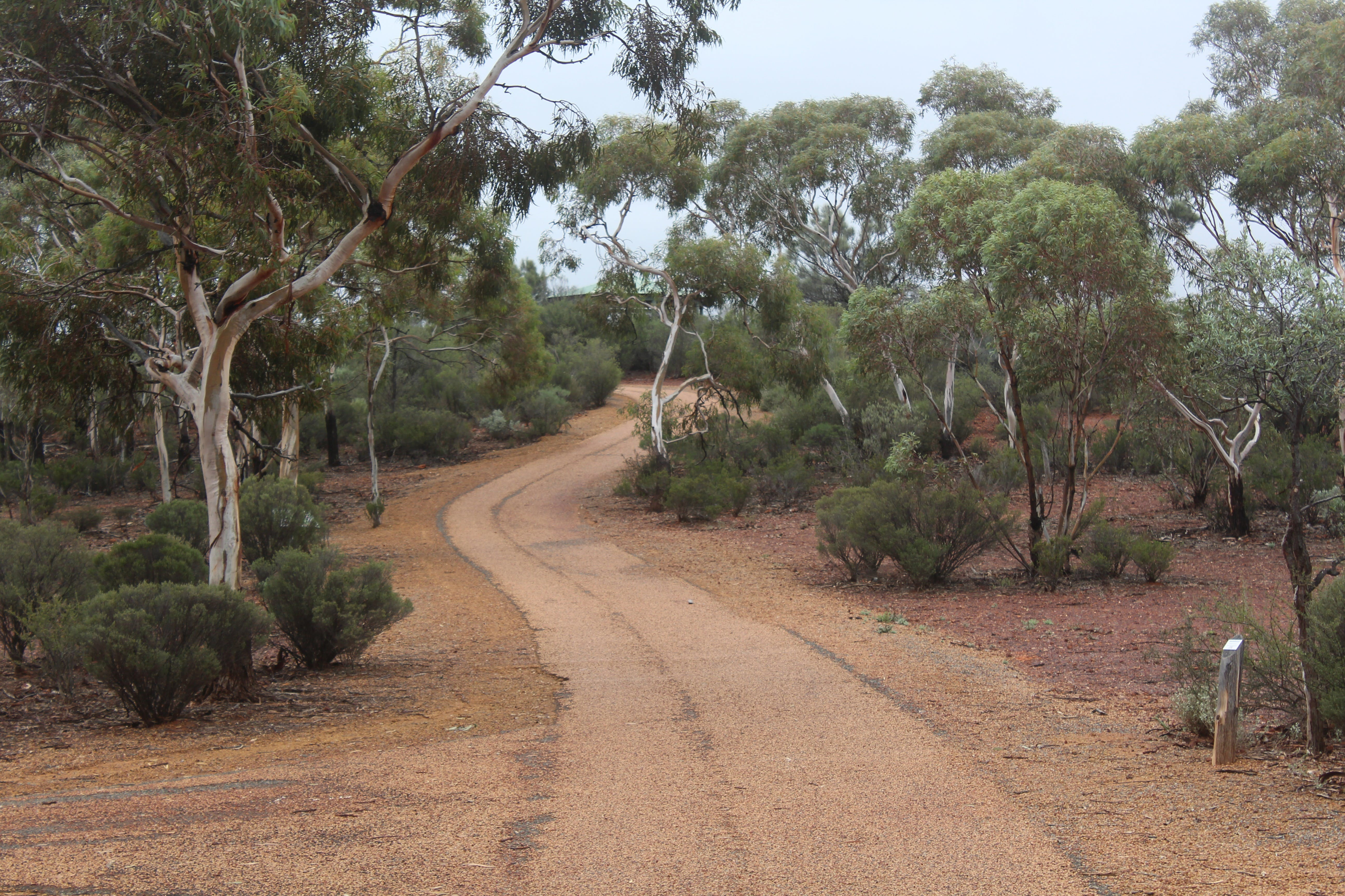 Karlkurla Bushland Park - Accommodation Adelaide