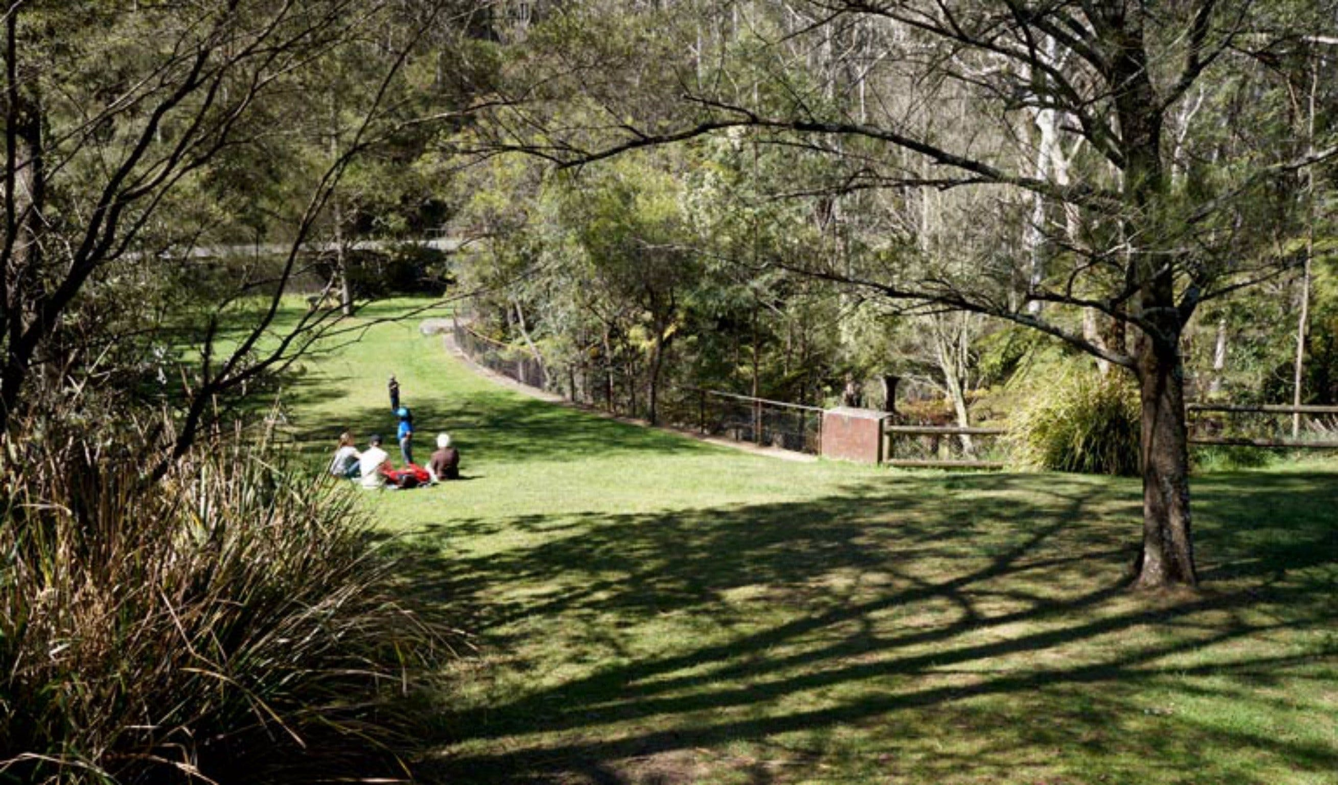 Leura Cascades picnic area - Accommodation Adelaide