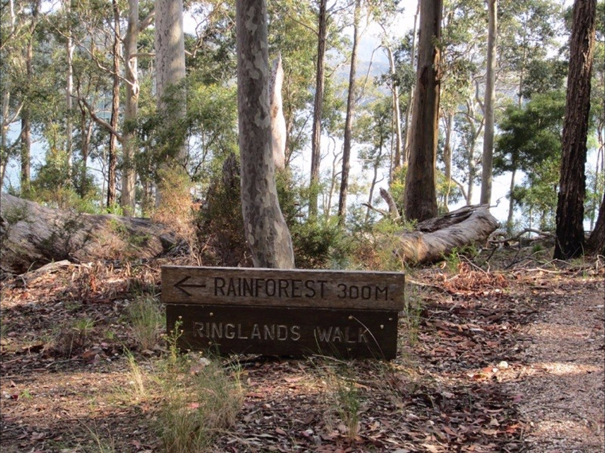 Ringlands Rotary Walk Narooma - Accommodation Adelaide