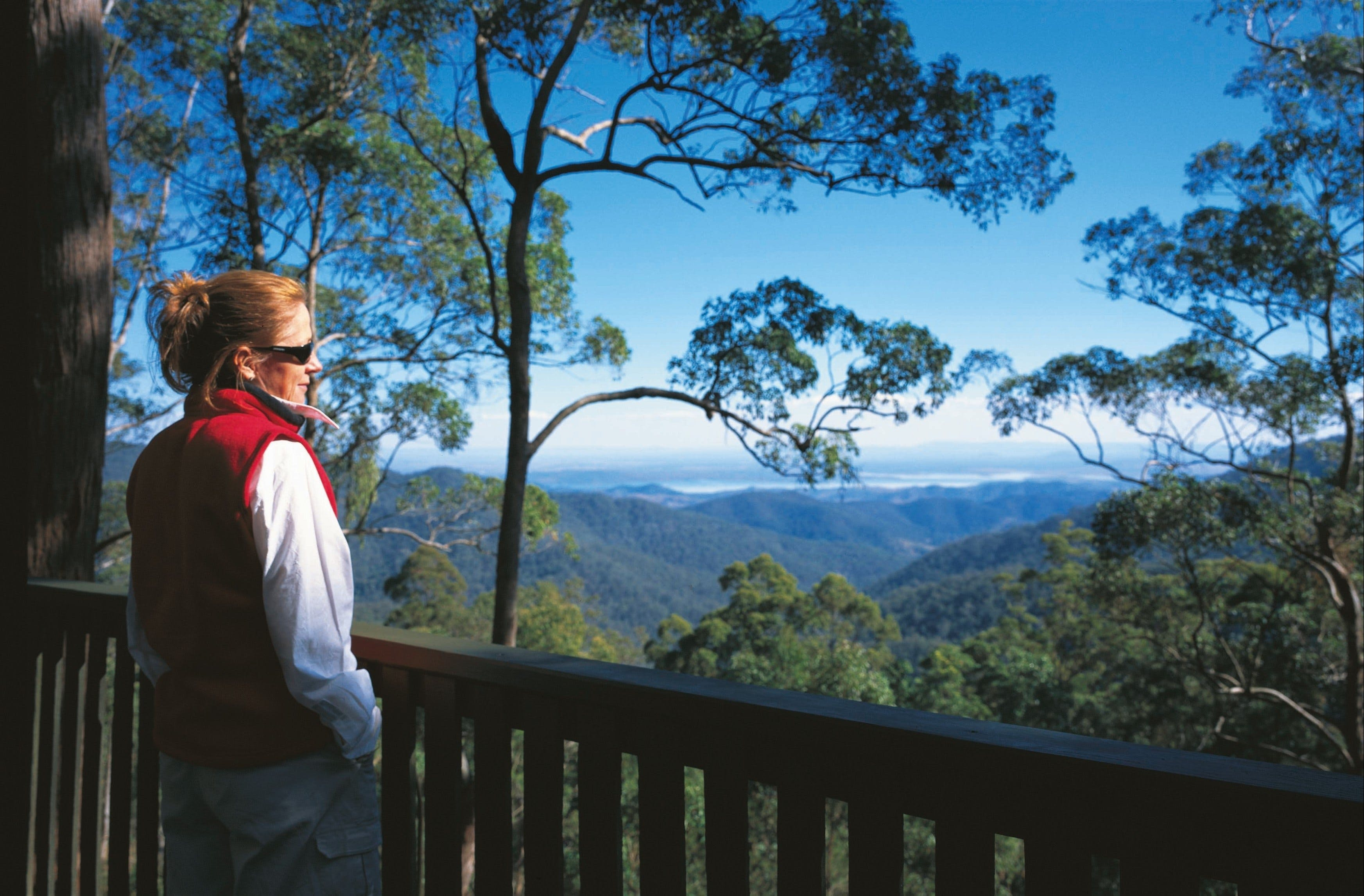 D'Aguilar National Park - Accommodation Adelaide