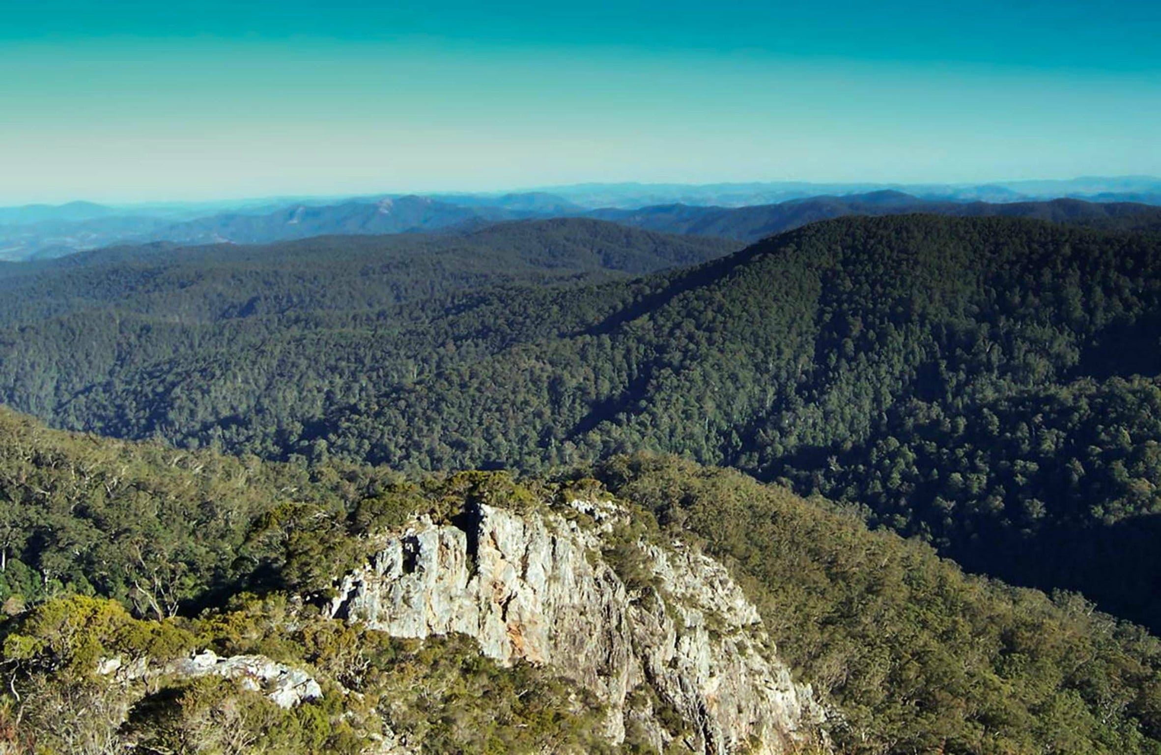 Tapin Tops National Park - Accommodation Adelaide