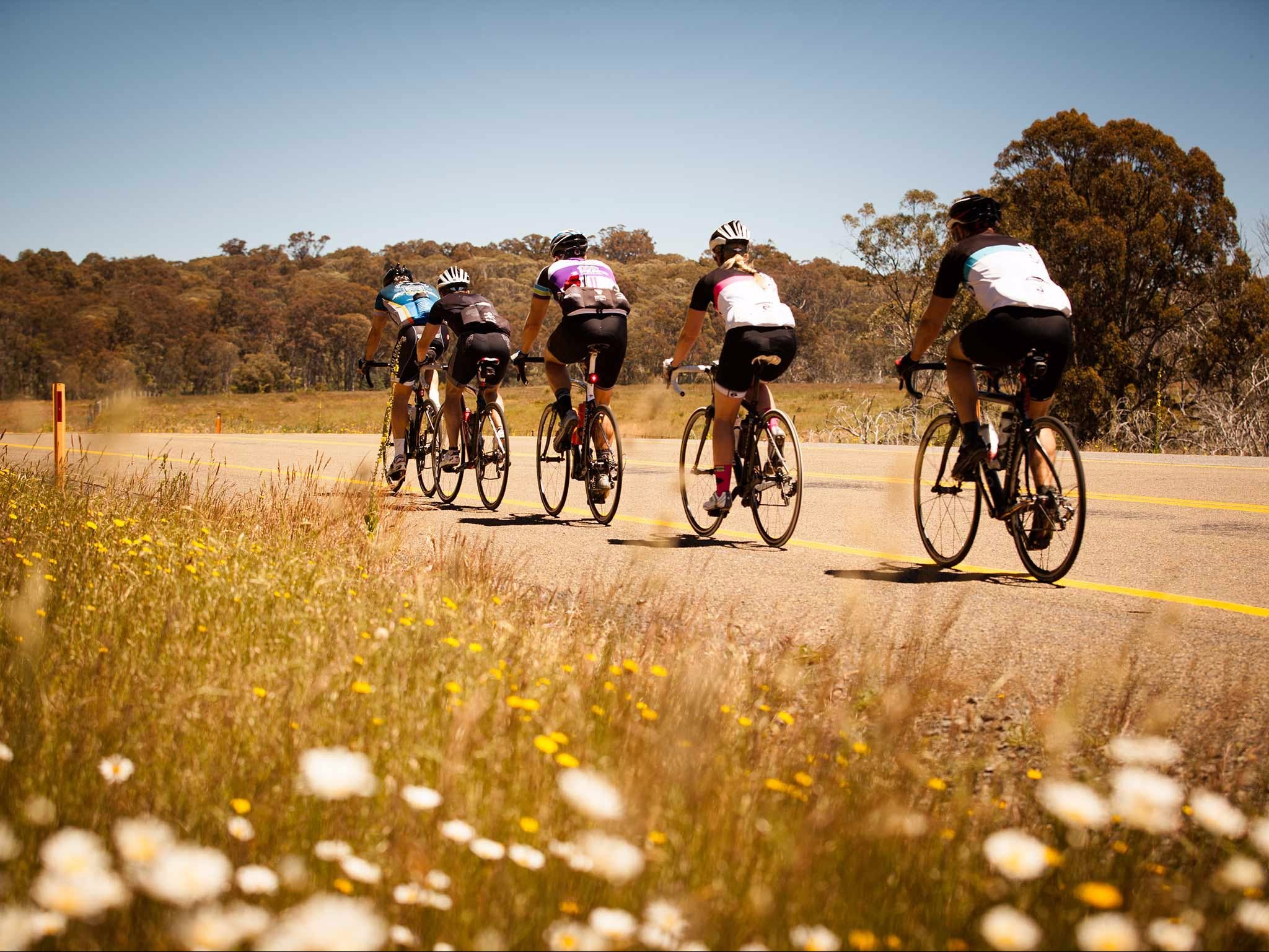 7 Peaks Ride - Dinner Plain - Accommodation Adelaide