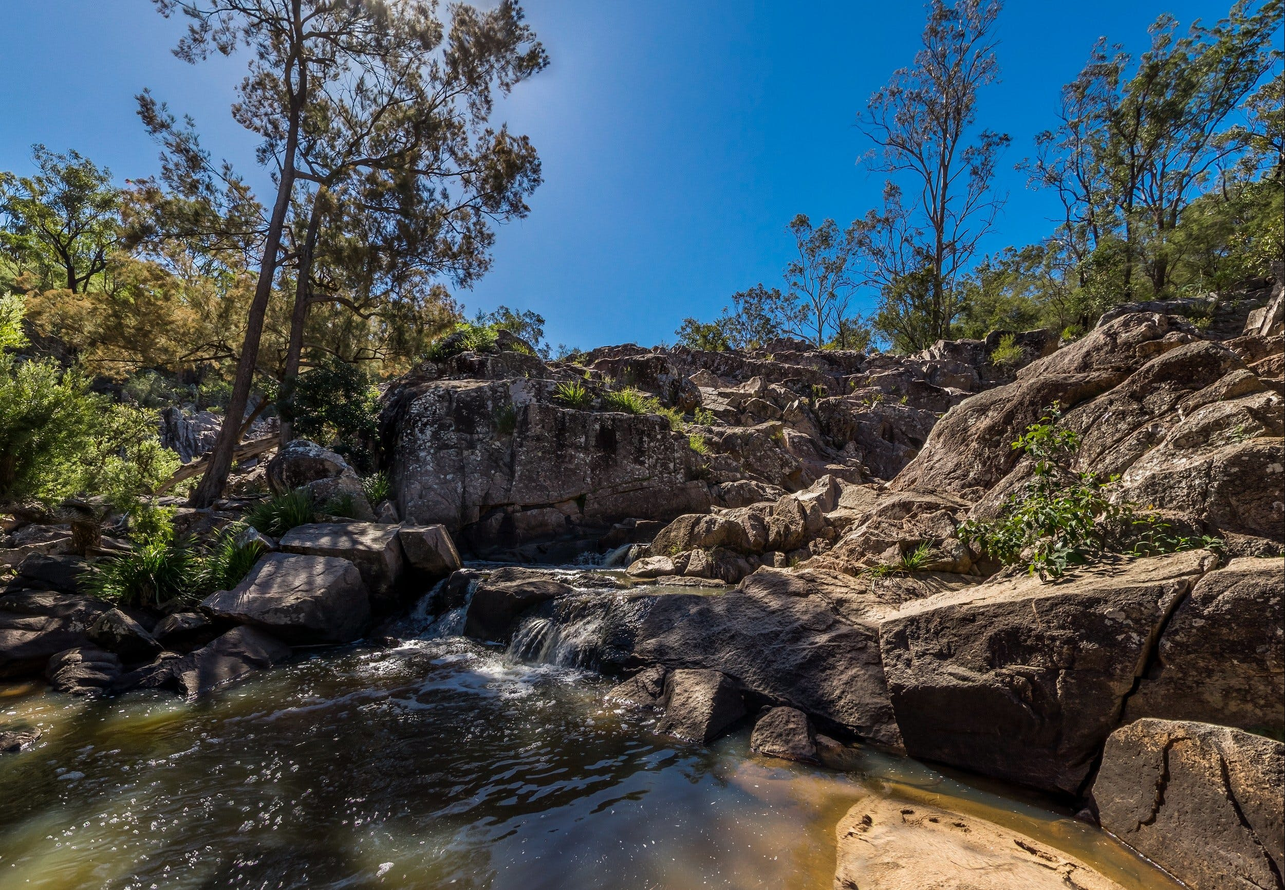 Crows Nest Falls - Accommodation Adelaide