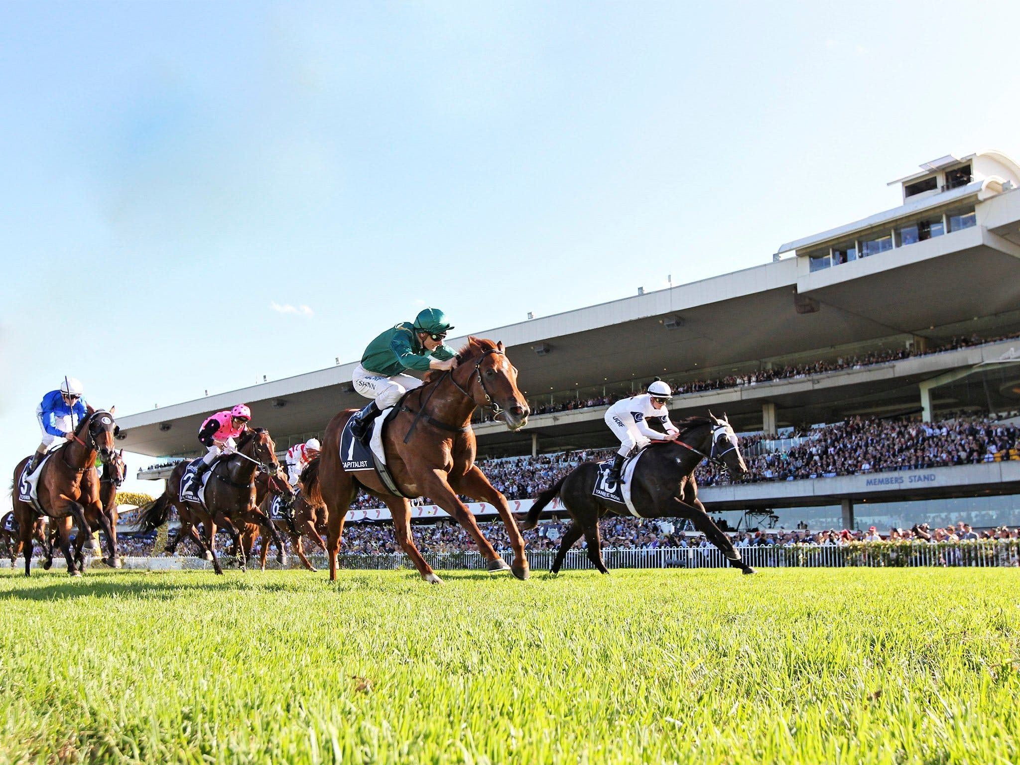 Rosehill Gardens Racecourse - Accommodation Adelaide