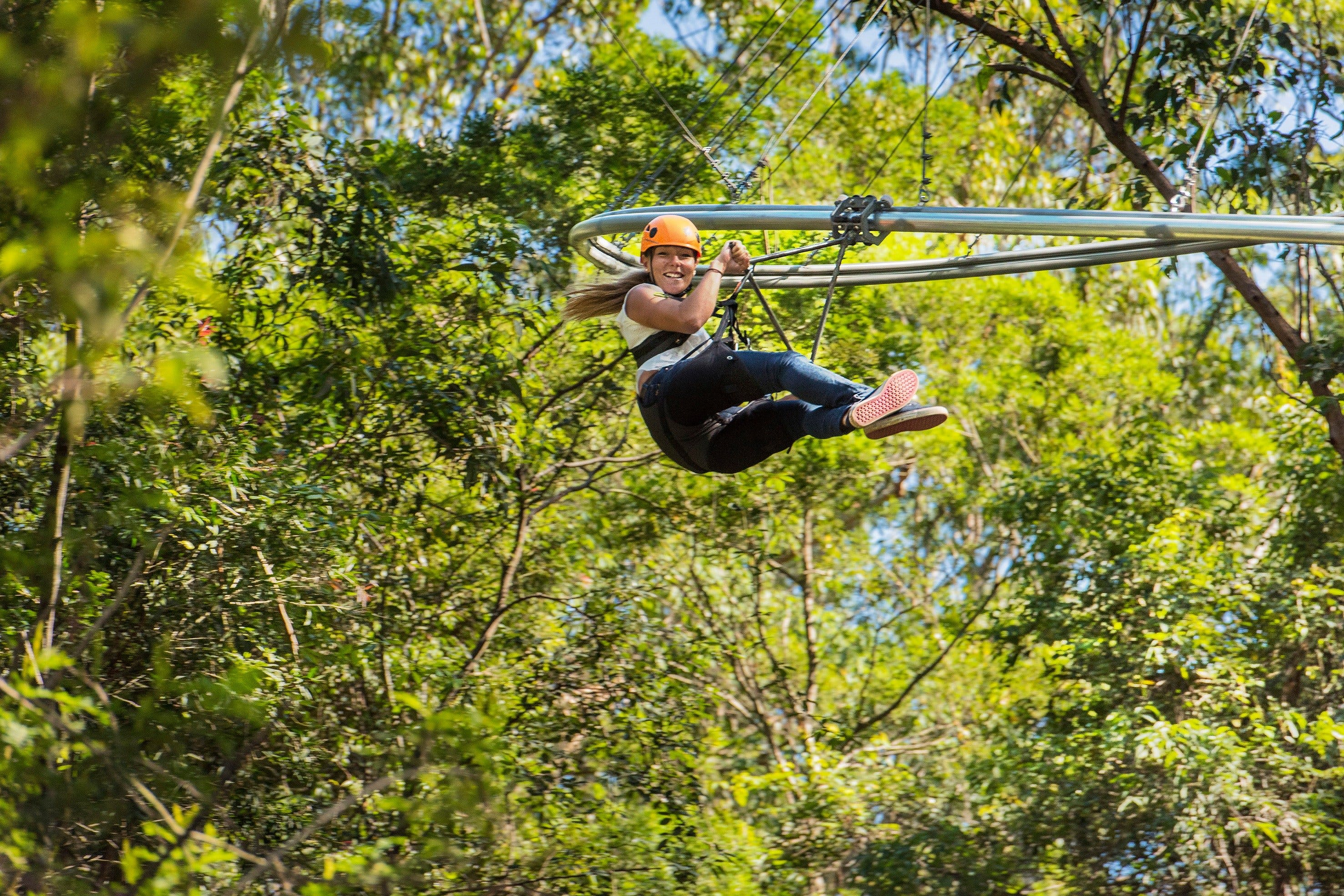 TreeTop Crazy Rider - Accommodation Adelaide
