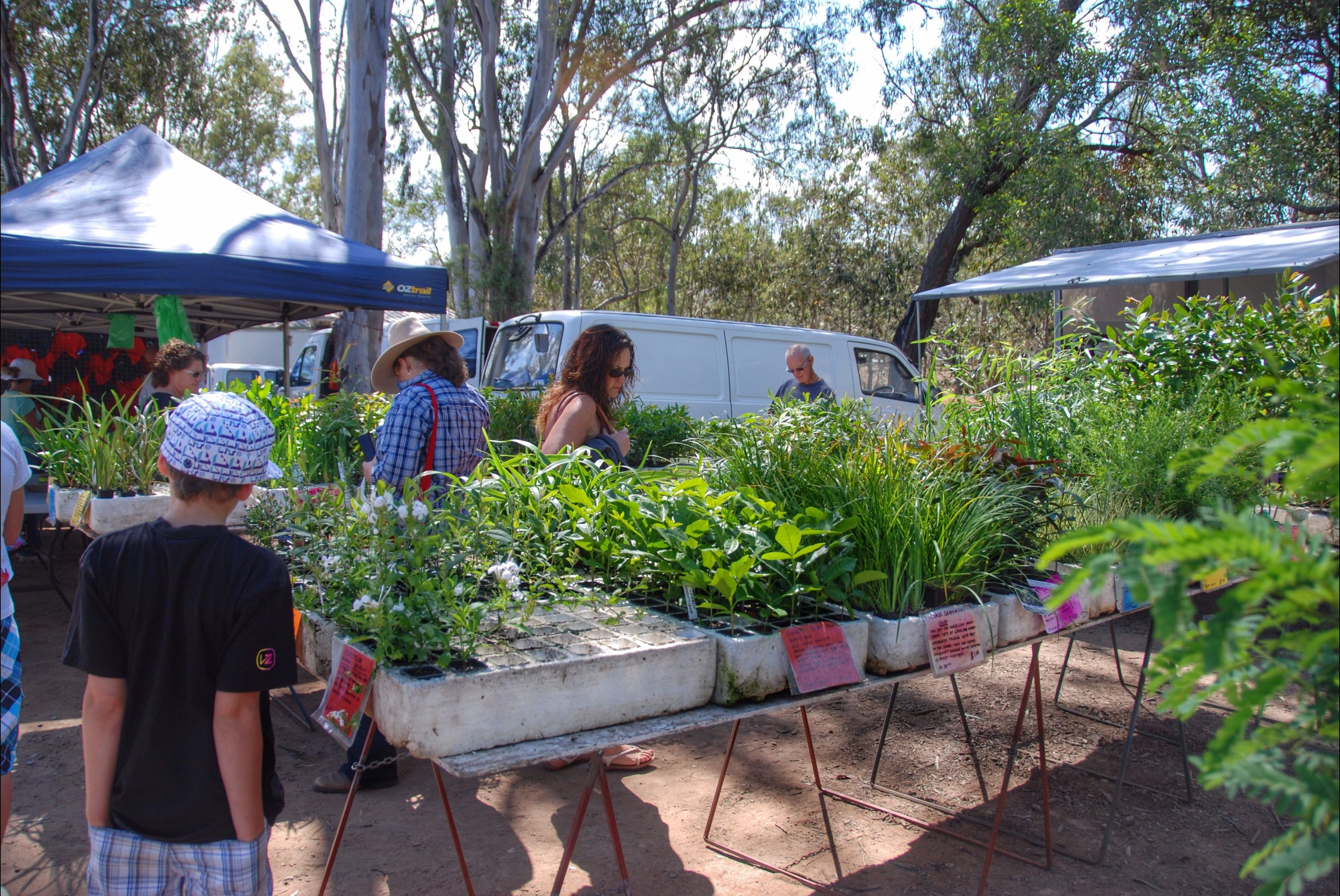 Fernvale Country Markets - Accommodation Adelaide