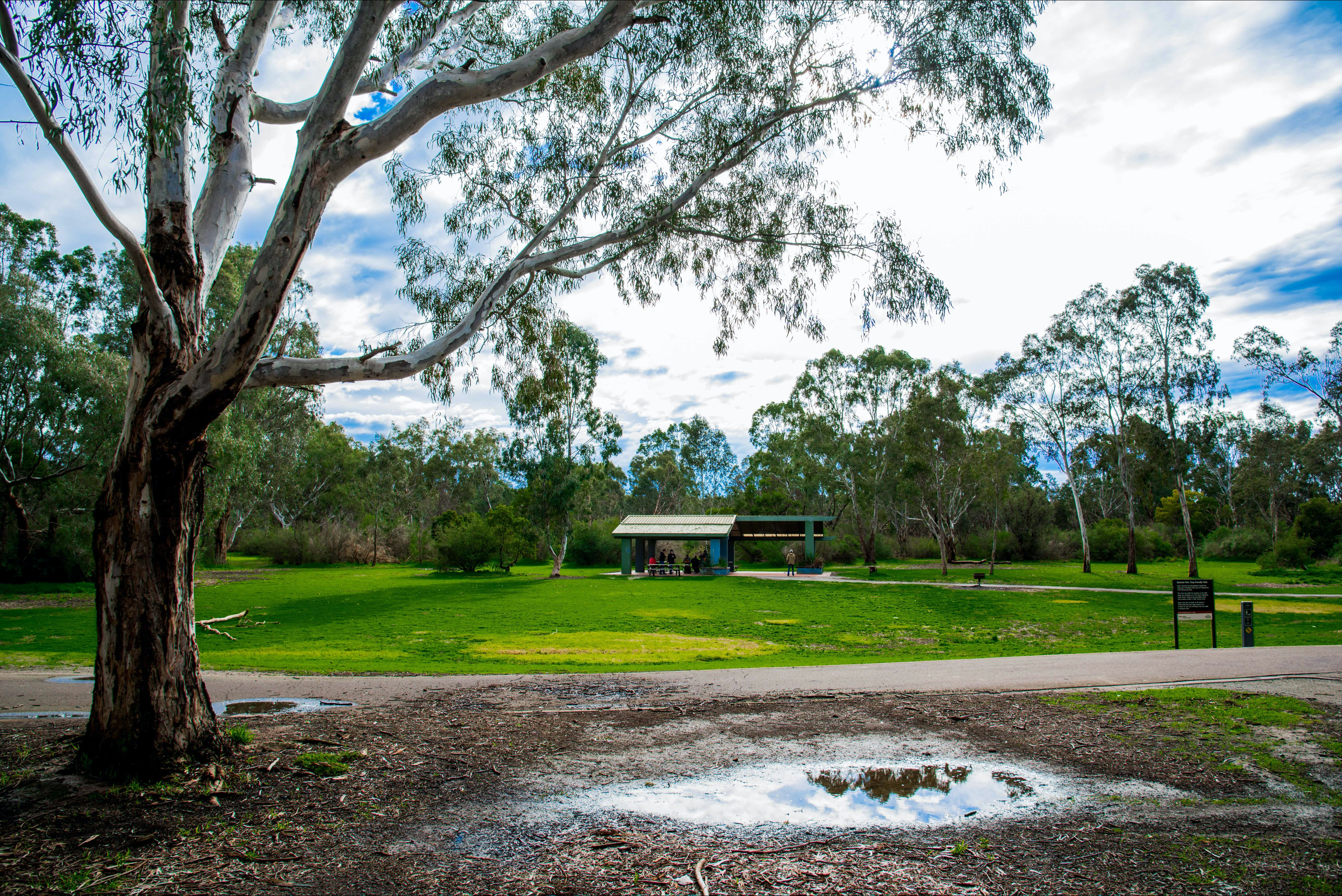 Birrarrung Park - Accommodation Adelaide