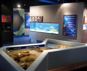 Marine and Freshwater Discovery Centre - Accommodation Adelaide