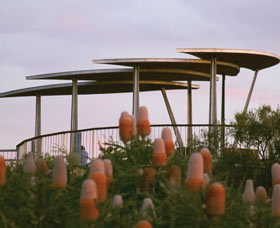 Reabold Hill Summit Boardwalk Bold Park - Accommodation Adelaide