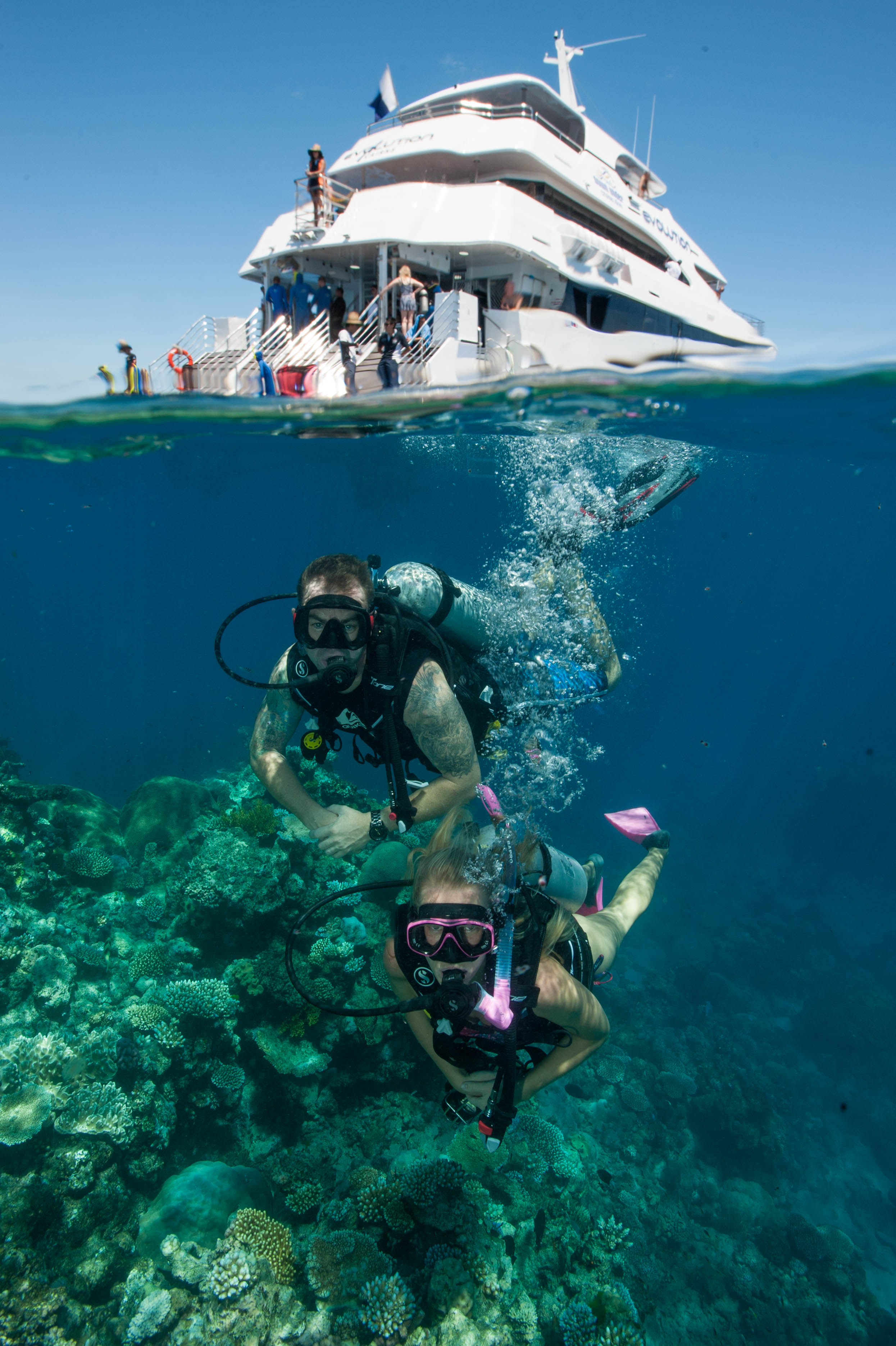 Down Under Cruise and Dive - Accommodation Adelaide