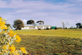Lucindale Country Club - Accommodation Adelaide