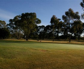 Winchelsea Golf Club - Accommodation Adelaide