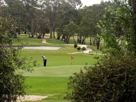 Mount Barker-Hahndorf Golf Club - Accommodation Adelaide