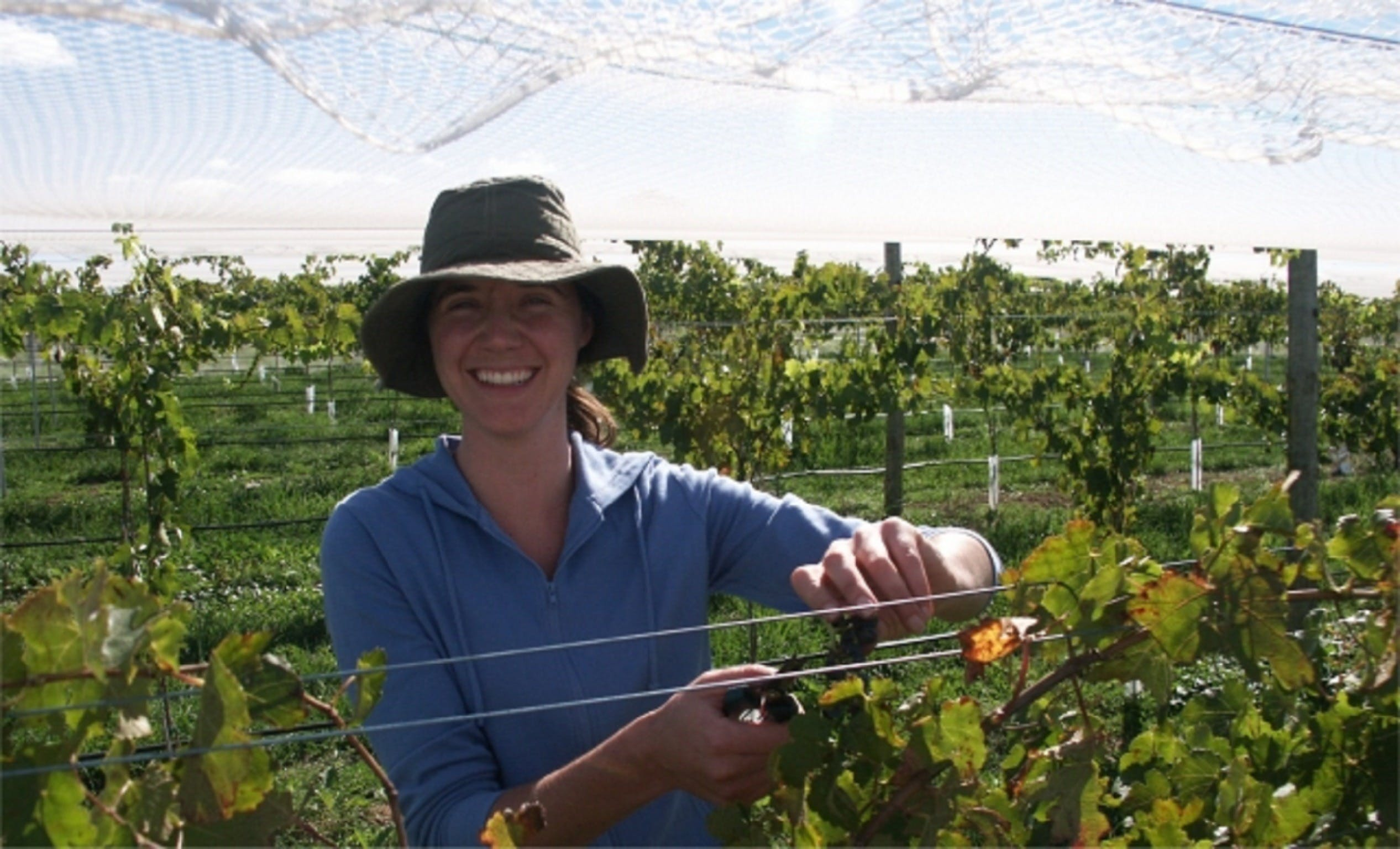 Kingsdale Wines - Cellar Door Wine Tastings - Accommodation Adelaide