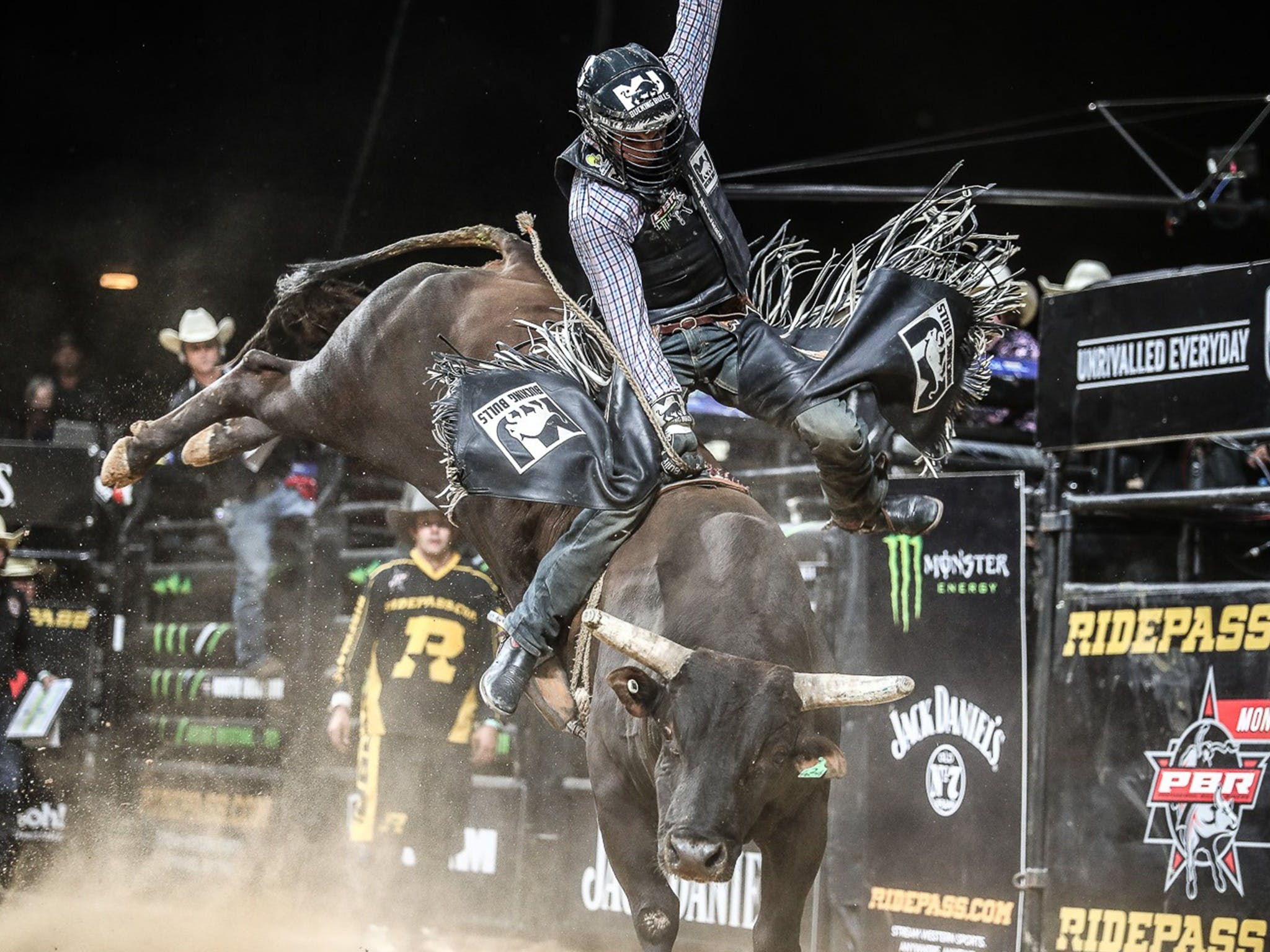 PBR Hawkesbury Stampede - Accommodation Adelaide