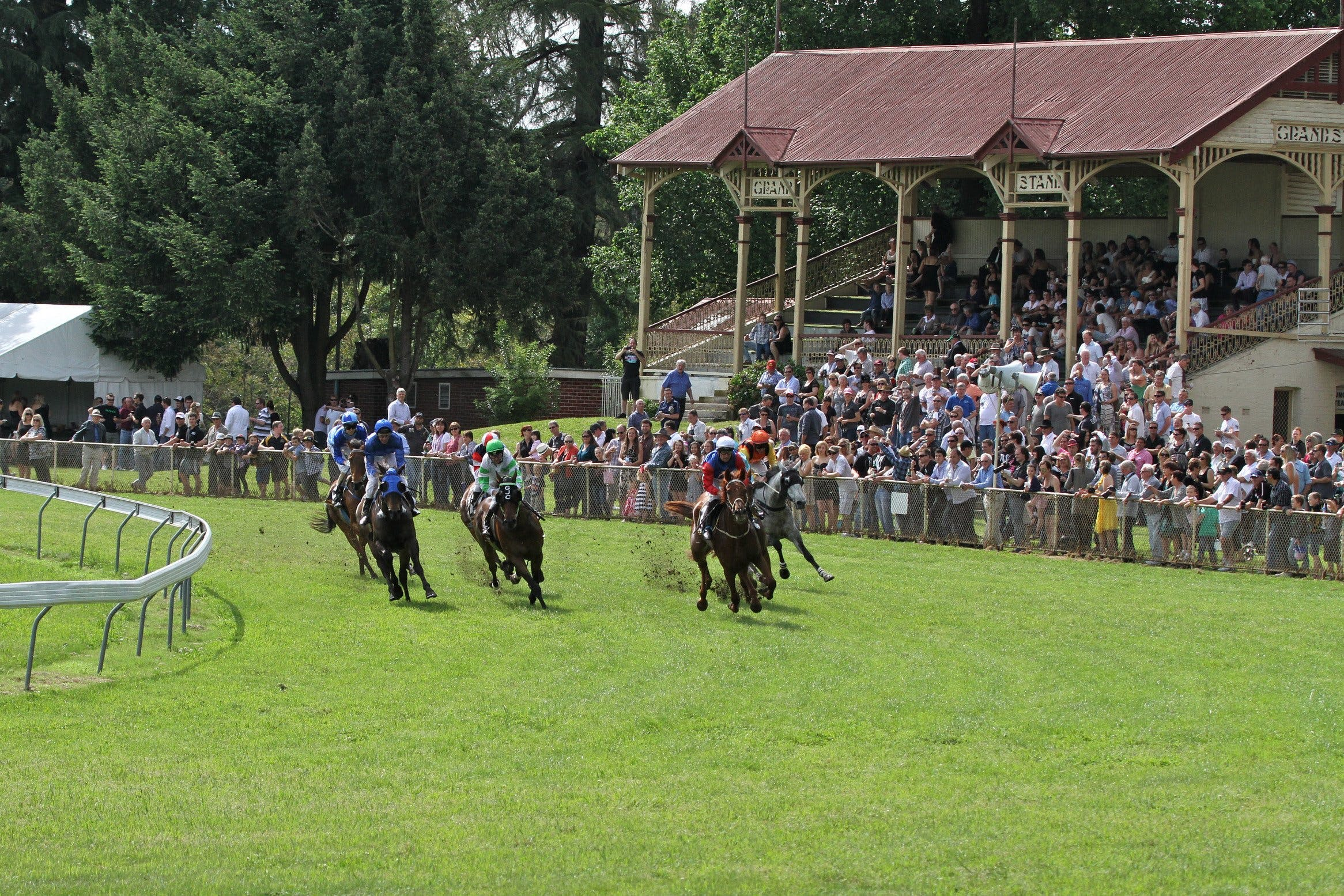 Tumut Derby Day - Accommodation Adelaide