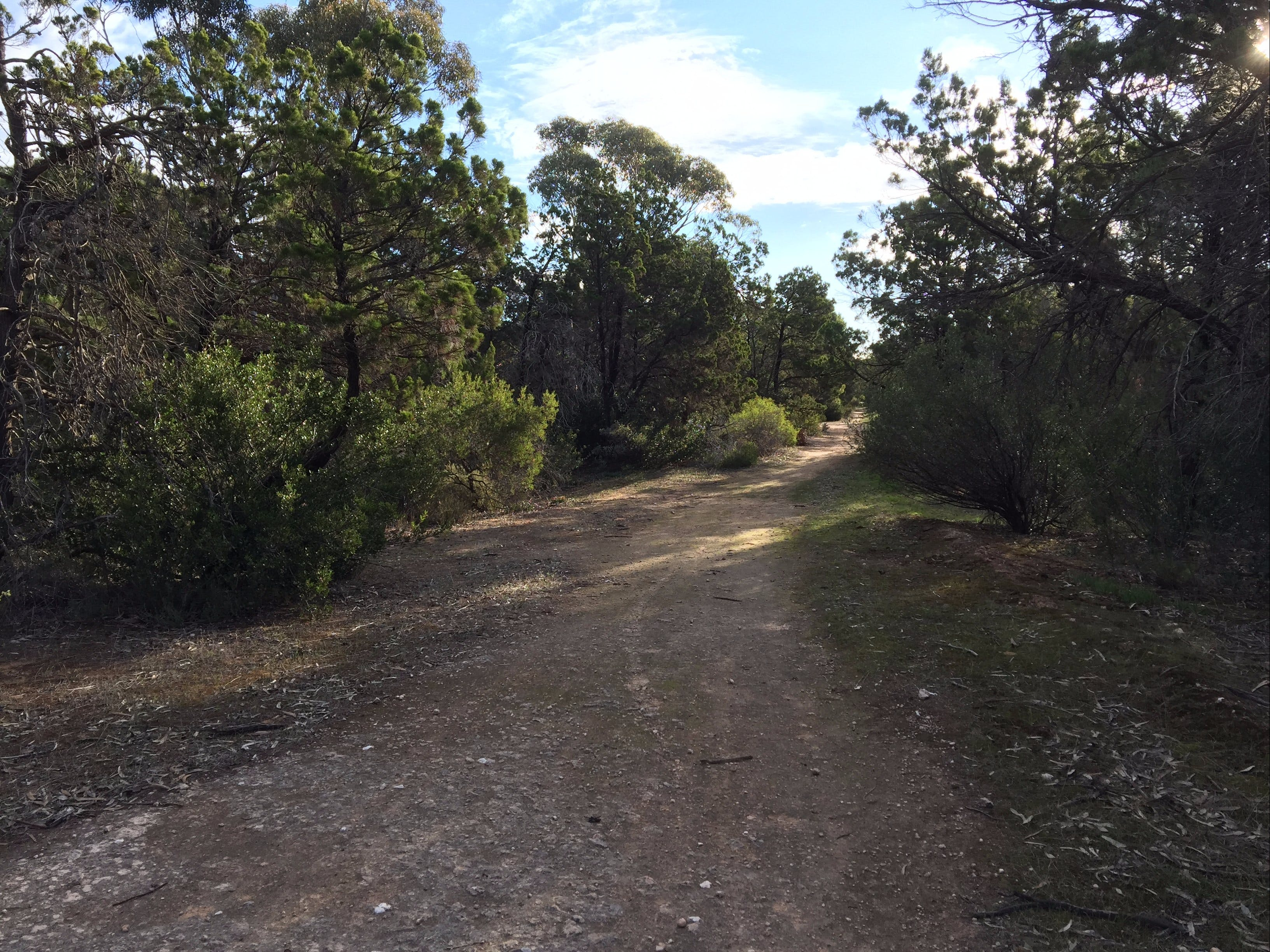 Victoria Park Moonta monthly walks - Accommodation Adelaide