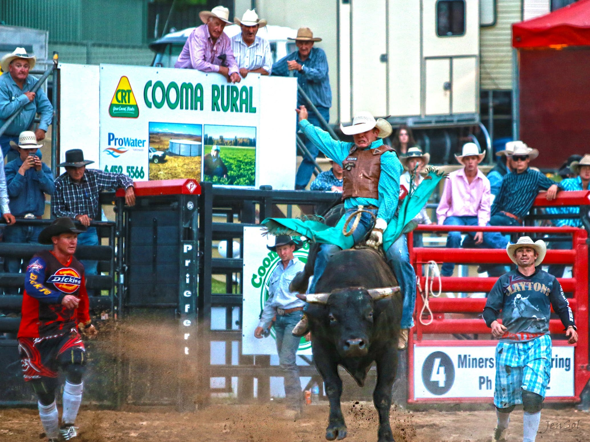 AgriWest Cooma Rodeo - Accommodation Adelaide