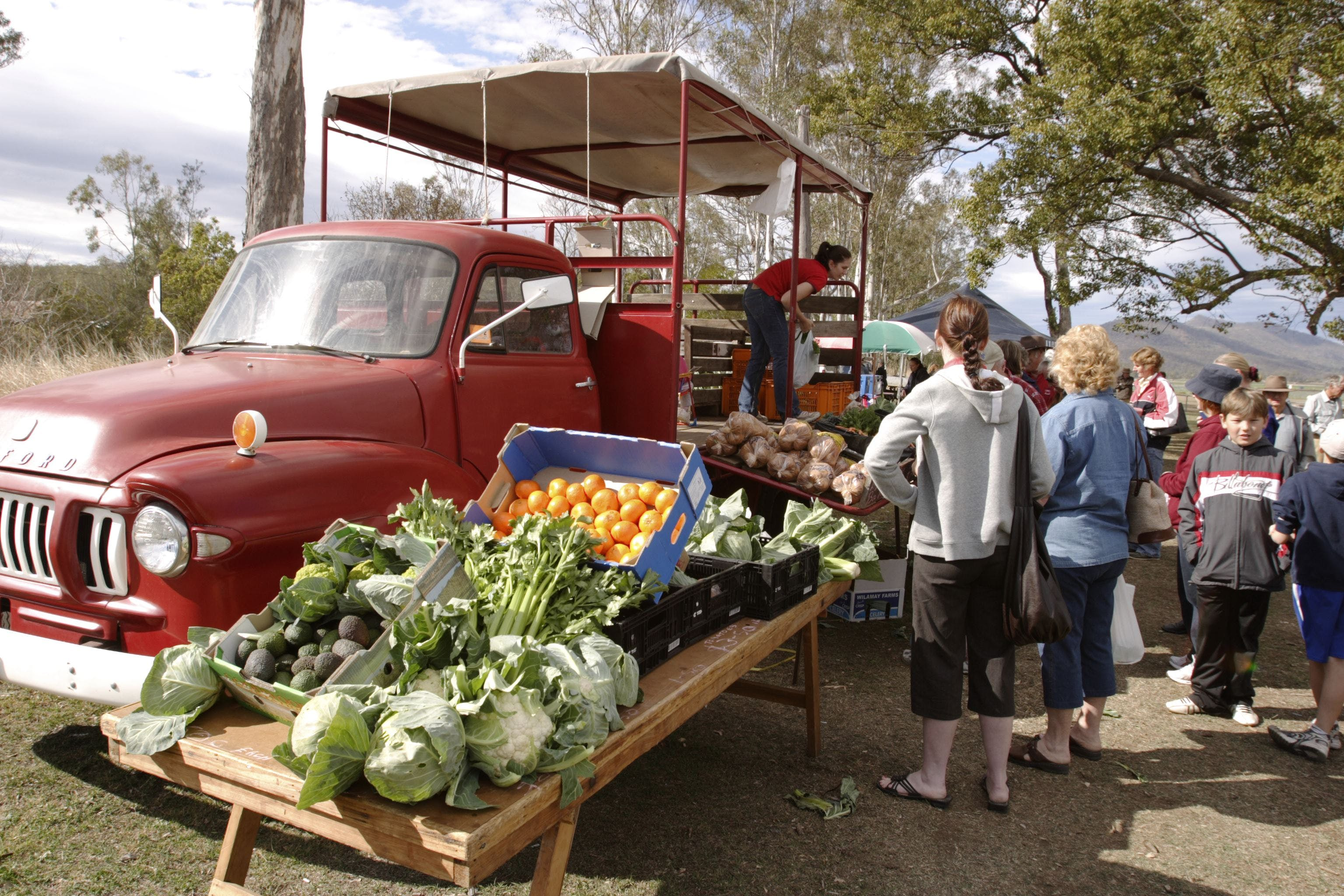 Murphys Creek Markets - Accommodation Adelaide
