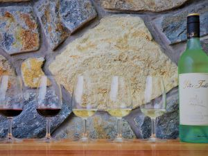 Peter Teakle Wines - Accommodation Adelaide