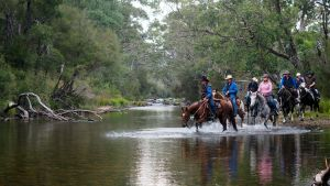 The Man From Snowy River Bush Festival - Accommodation Adelaide