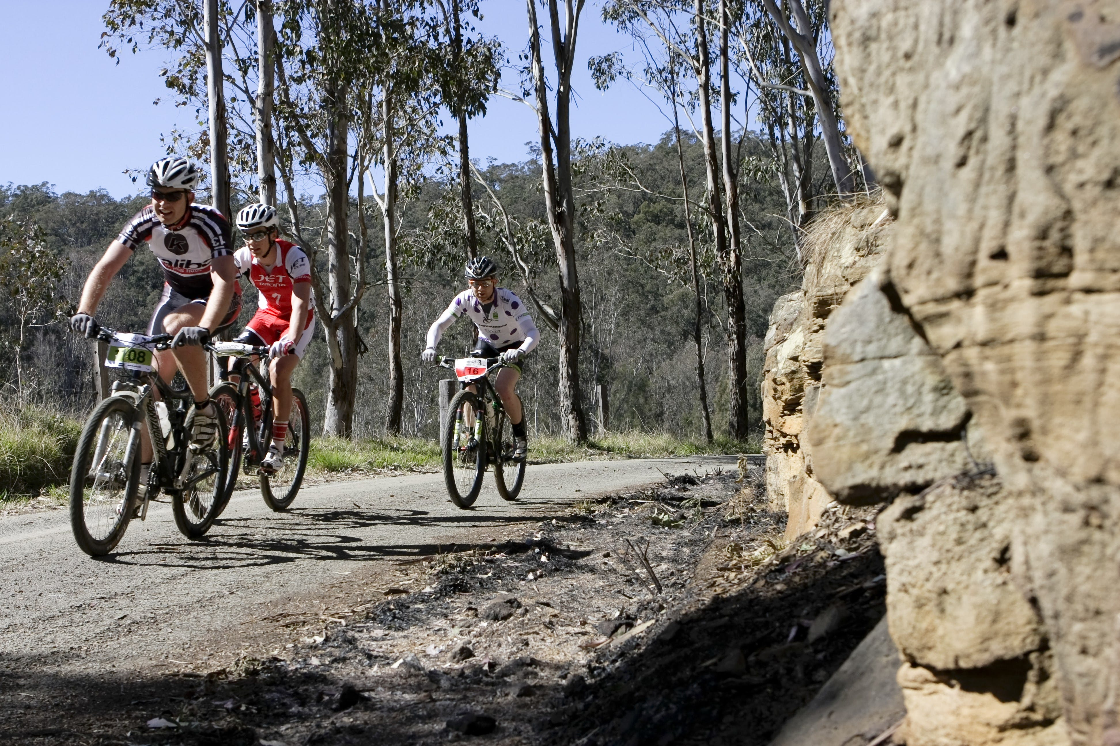 Wollombi Wild Ride Mountain Bike Ride - Accommodation Adelaide
