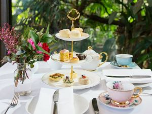 High Tea at Melbourne Zoo - Accommodation Adelaide
