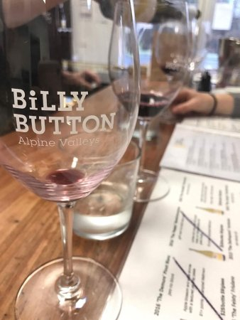 Billy Button Cellar Door - Accommodation Adelaide