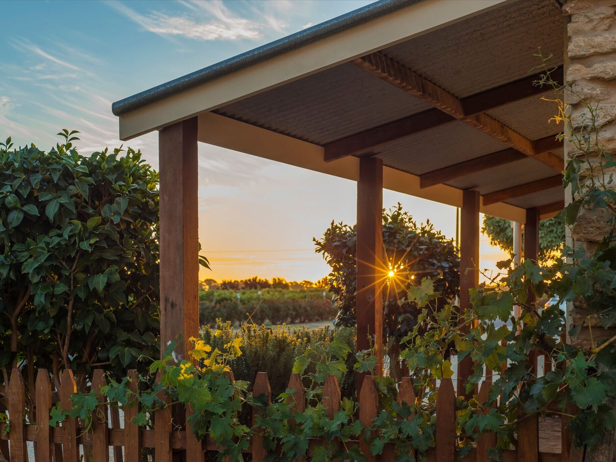 Caf in the Vines - Accommodation Adelaide