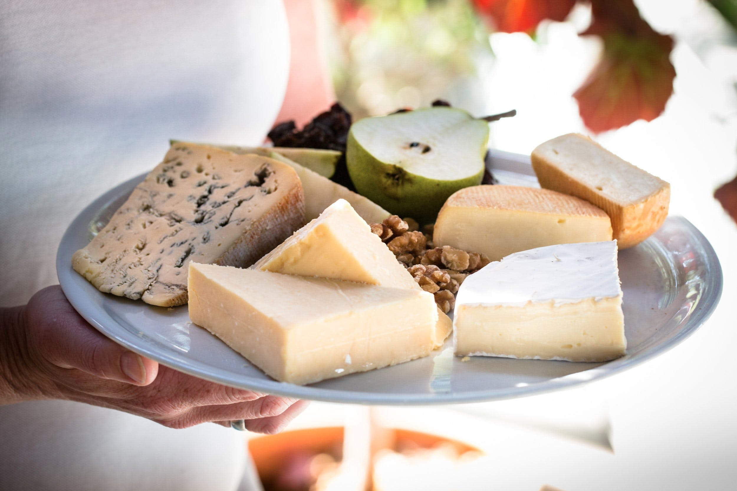 Milawa Cheese Company - Accommodation Adelaide