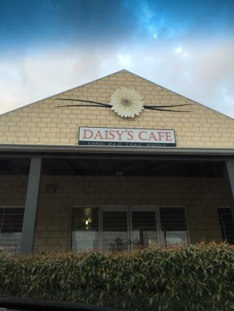 Daisy's Cafe - Accommodation Adelaide