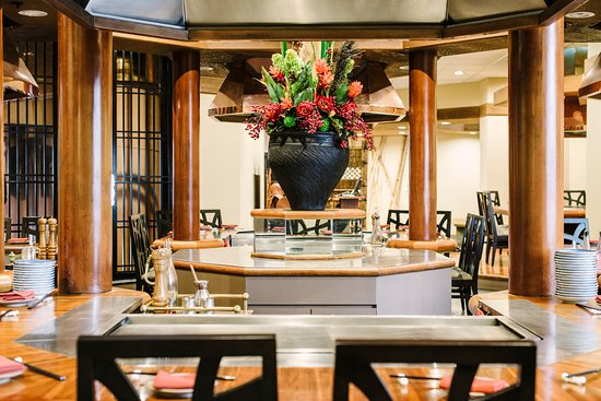 Shiki - Accommodation Adelaide