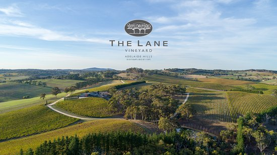 The Lane Vineyard - Accommodation Adelaide