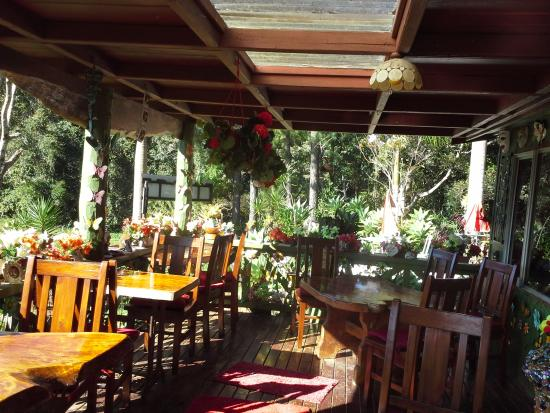 Suzannes's Hideaway Cafe - Accommodation Adelaide