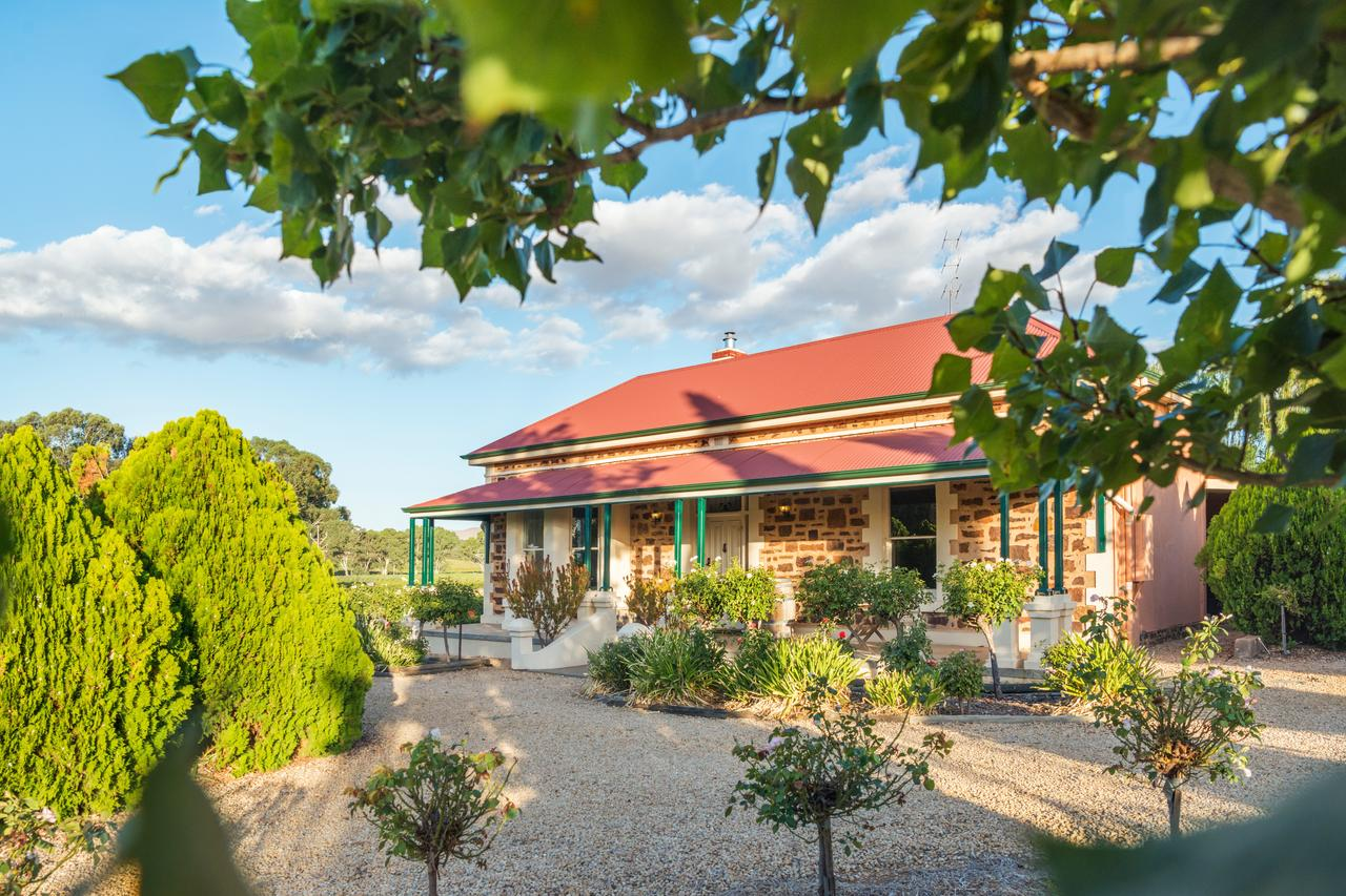 Barossa Shiraz Estate - Accommodation Adelaide