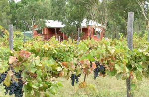 Fergies Hill Spa Cottage  Granite Ridge Wines - Accommodation Adelaide
