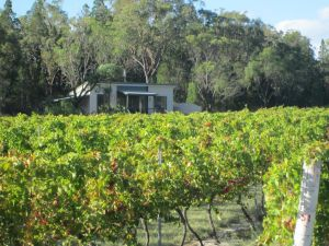 Just Red Wines Cabins - Accommodation Adelaide